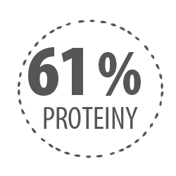 61 proteiny